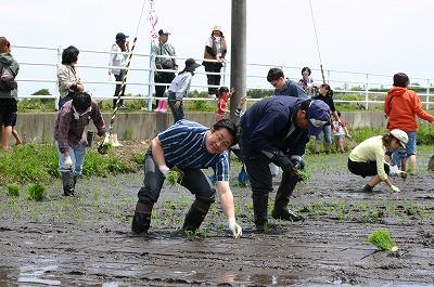 5月16日 名取市飯野坂で田植え